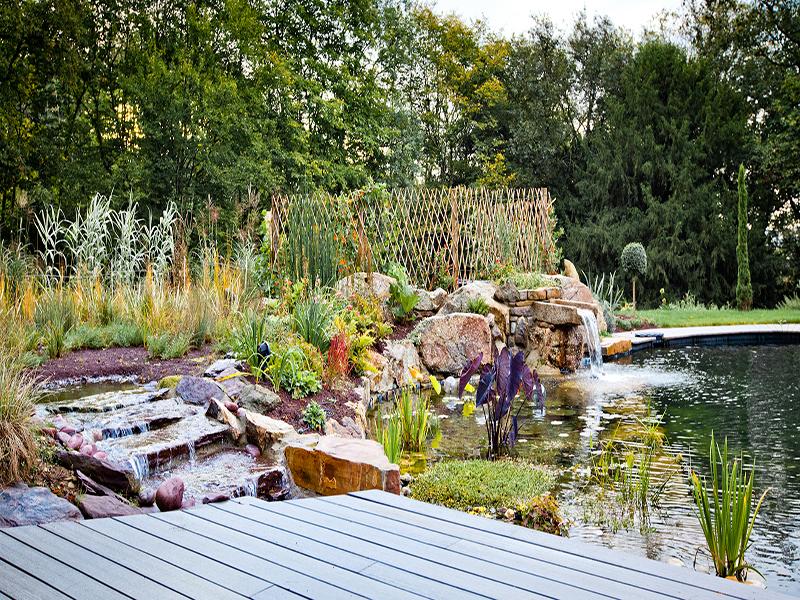 Paysagiste Brejoin Brejoin Jardins 13